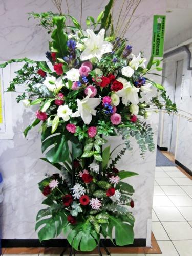ミストラル(Le mistral) 画像出典:www.flower-mistral.com