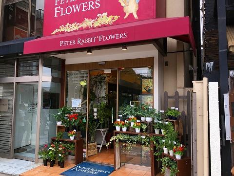 【閉店】PETER RABBIT FLOWERS (ピーターラビット フラワーズ) 外苑いちょう並木本店